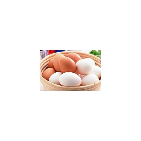 Huevos Pastoriles