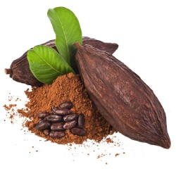 Cacao Amargo español x 500 grs.